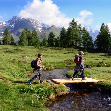 Campo di Comasine Foto G.Bernardi