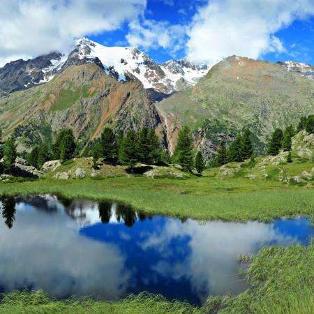 Lago Lama Monte Vioz (1) G.Bernardi